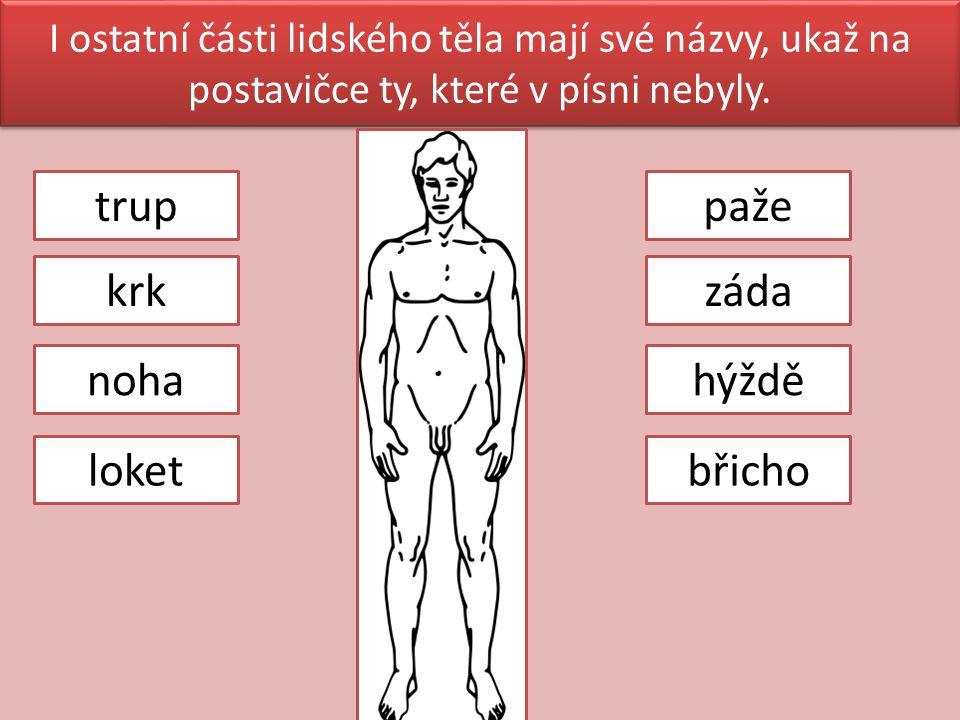I ostatní části lidského těla mají své názvy, ukaž na postavičce ty, které v písni nebyly.