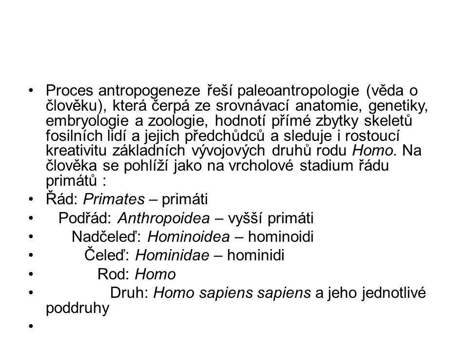 Proces antropogeneze řeší paleoantropologie (věda o člověku), která čerpá ze srovnávací anatomie, genetiky, embryologie a zoologie, hodnotí přímé zbytky skeletů fosilních lidí a jejich předchůdců a sleduje i rostoucí kreativitu základních vývojových druhů rodu Homo.