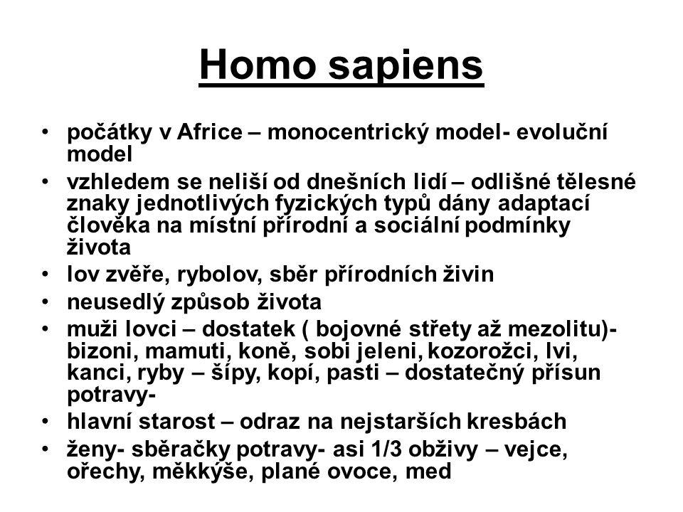 Homo sapiens počátky v Africe – monocentrický model- evoluční model vzhledem se neliší od dnešních lidí – odlišné tělesné znaky jednotlivých fyzických typů dány adaptací člověka na místní přírodní a sociální podmínky života lov zvěře, rybolov, sběr přírodních živin neusedlý způsob života muži lovci – dostatek ( bojovné střety až mezolitu)- bizoni, mamuti, koně, sobi jeleni, kozorožci, lvi, kanci, ryby – šípy, kopí, pasti – dostatečný přísun potravy- hlavní starost – odraz na nejstarších kresbách ženy- sběračky potravy- asi 1/3 obživy – vejce, ořechy, měkkýše, plané ovoce, med
