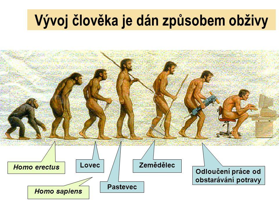 Vývoj člověka je dán způsobem obživy Homo erectus Lovec Pastevec Zemědělec Odloučení práce od obstarávání potravy Homo sapiens