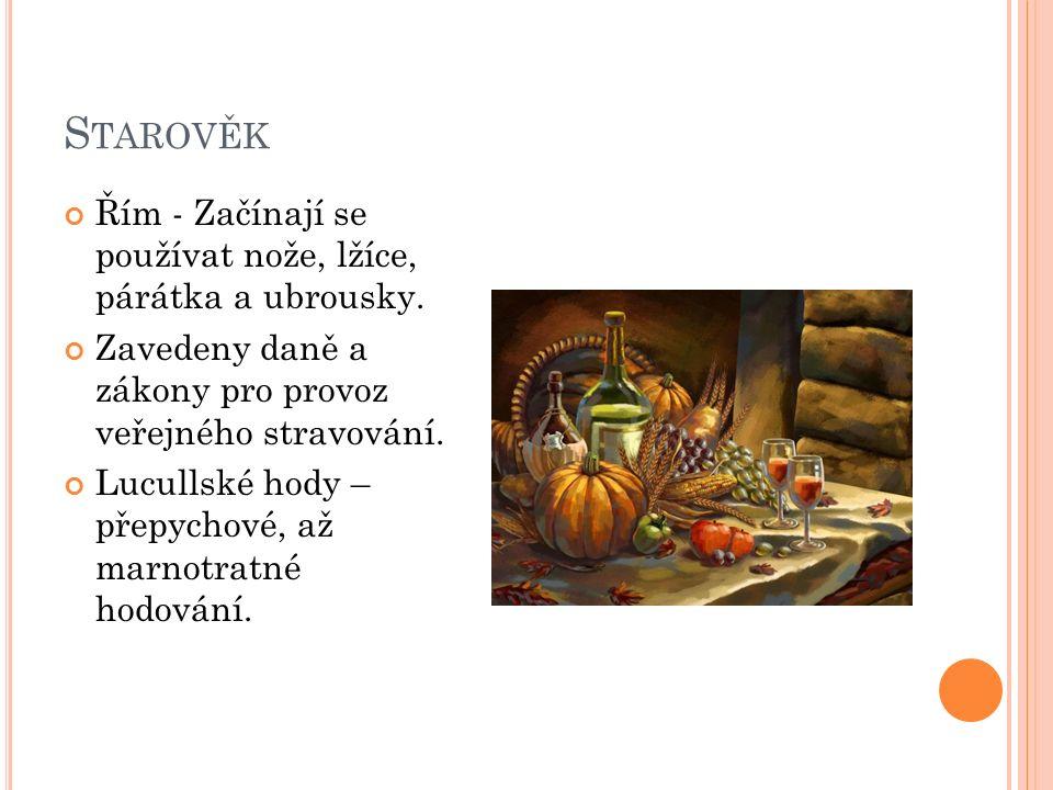 S TŘEDOVĚK Venkovské hostince – jedna místnost, kde pocestní jedli, pili a kde se též vařilo na otevřeném ohništi.