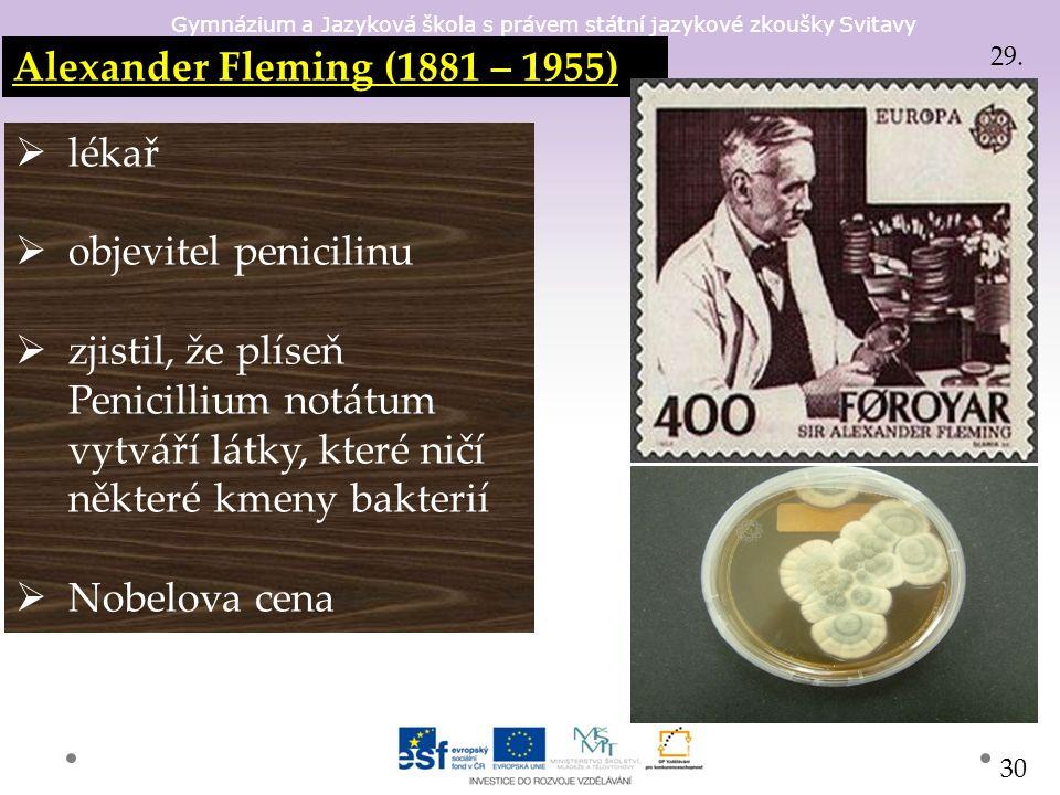 Gymnázium a Jazyková škola s právem státní jazykové zkoušky Svitavy Alexander Fleming (1881 – 1955)  lékař  objevitel penicilinu  zjistil, že plíseň Penicillium notátum vytváří látky, které ničí některé kmeny bakterií  Nobelova cena 29.