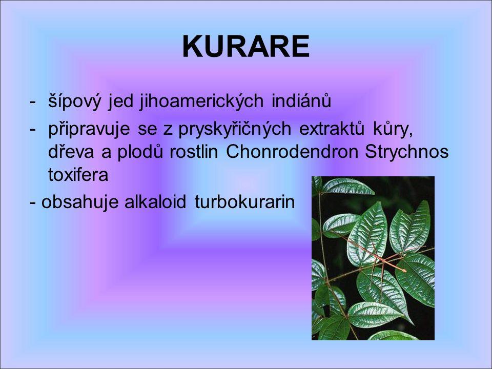 KURARE -šípový jed jihoamerických indiánů -připravuje se z pryskyřičných extraktů kůry, dřeva a plodů rostlin Chonrodendron Strychnos toxifera - obsahuje alkaloid turbokurarin