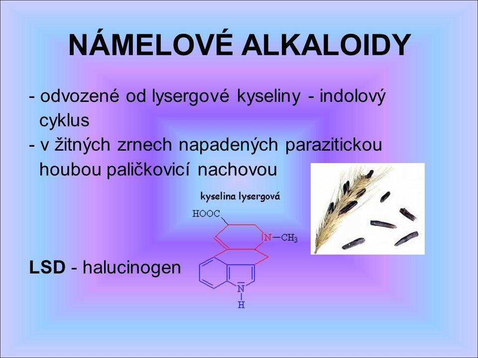 NÁMELOVÉ ALKALOIDY - odvozené od lysergové kyseliny - indolový cyklus - v žitných zrnech napadených parazitickou houbou paličkovicí nachovou LSD - halucinogen
