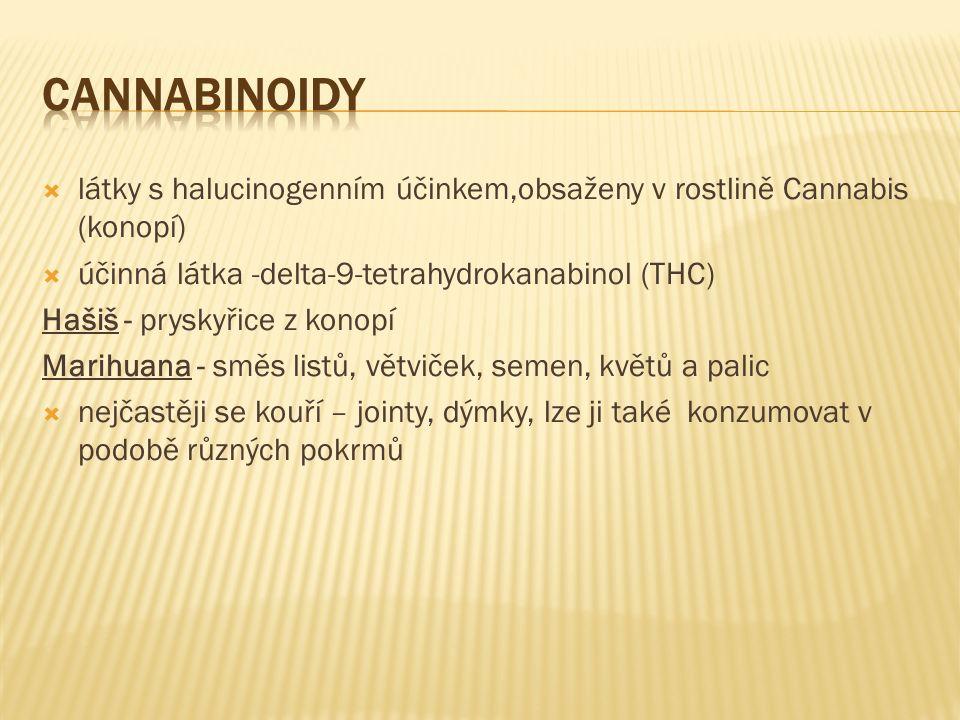  látky s halucinogenním účinkem,obsaženy v rostlině Cannabis (konopí)  účinná látka -delta-9-tetrahydrokanabinol (THC) Hašiš - pryskyřice z konopí Marihuana - směs listů, větviček, semen, květů a palic  nejčastěji se kouří – jointy, dýmky, lze ji také konzumovat v podobě různých pokrmů