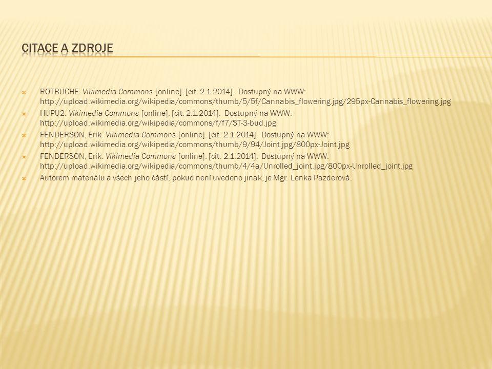  ROTBUCHE. Vikimedia Commons [online]. [cit. 2.1.2014].