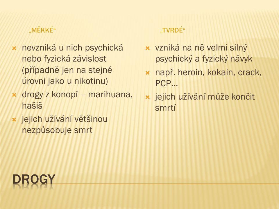 Papírek napuštěný LSD Ježunka williamsova (Lophophora williamsi)