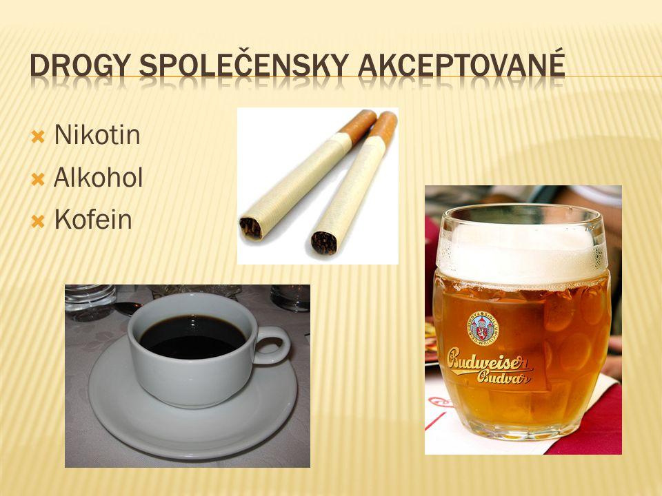 Lysohlávka česká