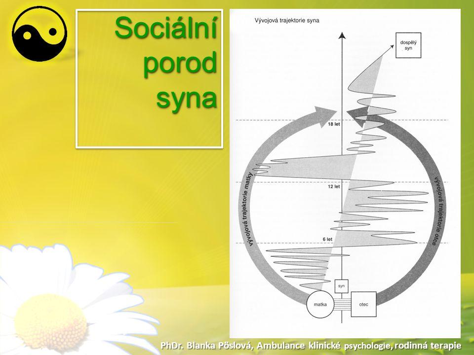 Sociální porod syna Sociální porod syna
