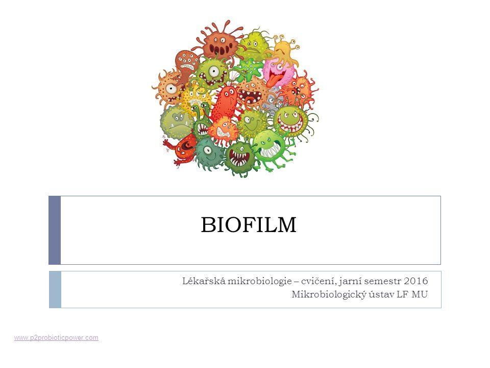 BIOFILM Lékařská mikrobiologie – cvičení, jarní semestr 2016 Mikrobiologický ústav LF MU www.p2probioticpower.com