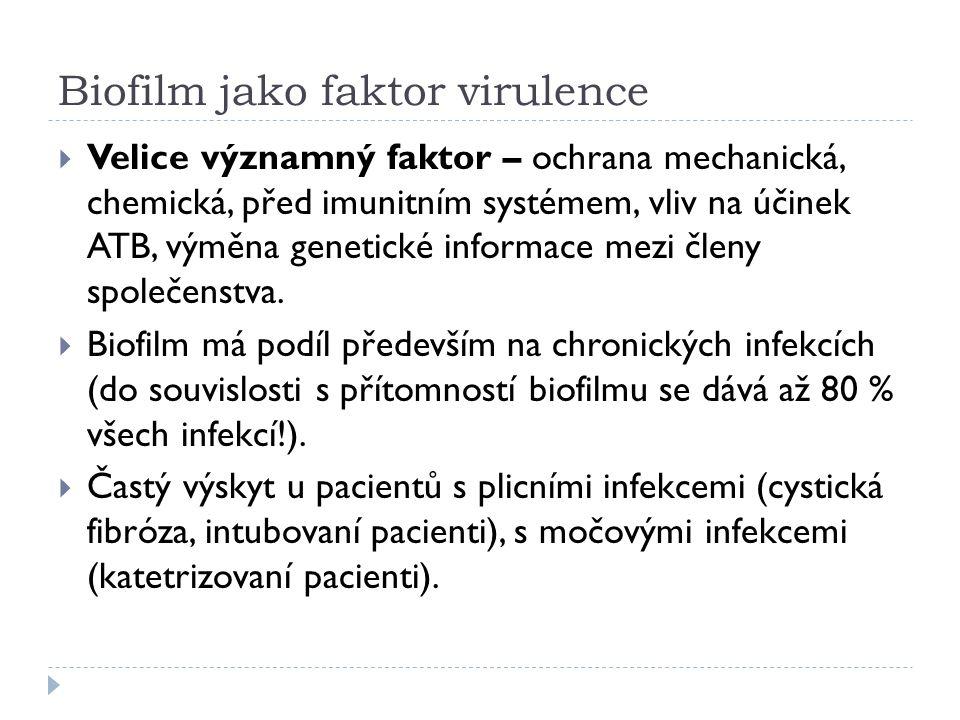Biofilm jako faktor virulence  Velice významný faktor – ochrana mechanická, chemická, před imunitním systémem, vliv na účinek ATB, výměna genetické informace mezi členy společenstva.