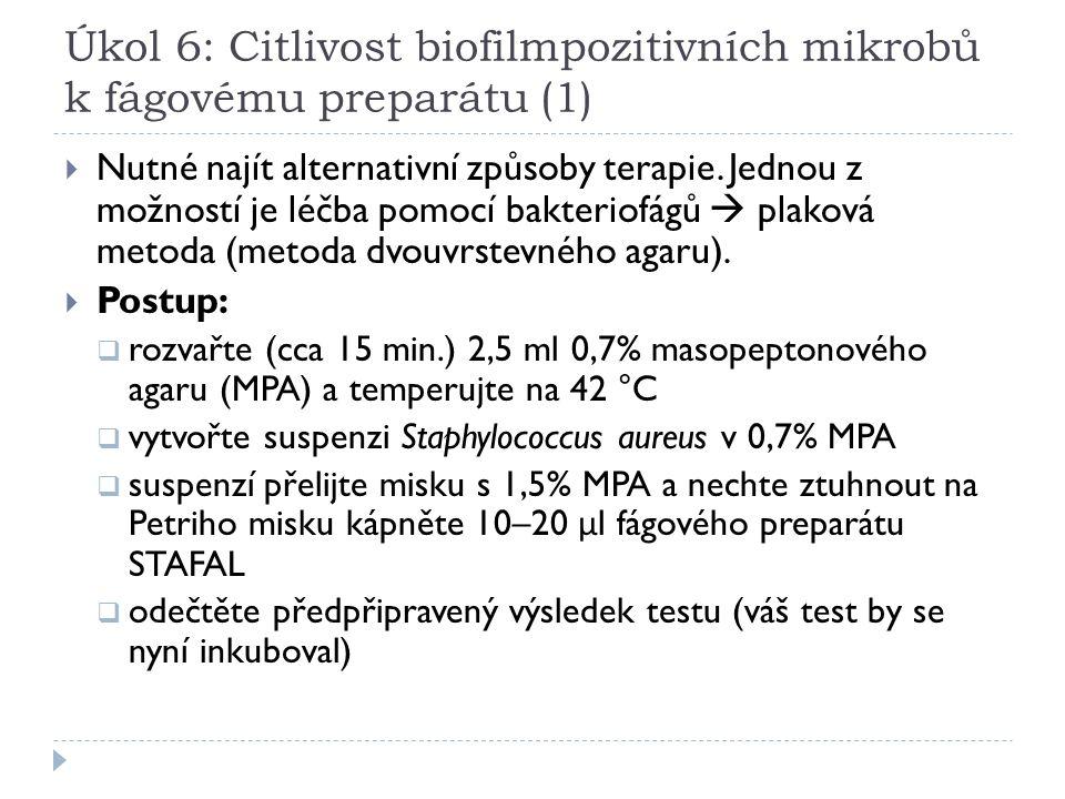 Úkol 6: Citlivost biofilmpozitivních mikrobů k fágovému preparátu (1)  Nutné najít alternativní způsoby terapie. Jednou z možností je léčba pomocí ba