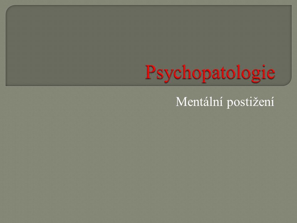 Co je podle Vás podstatou mentálního postižení.