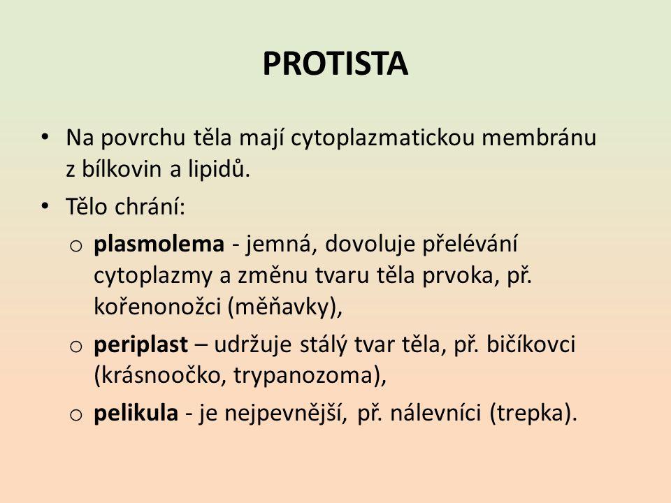 PROTISTA Na povrchu těla mají cytoplazmatickou membránu z bílkovin a lipidů.