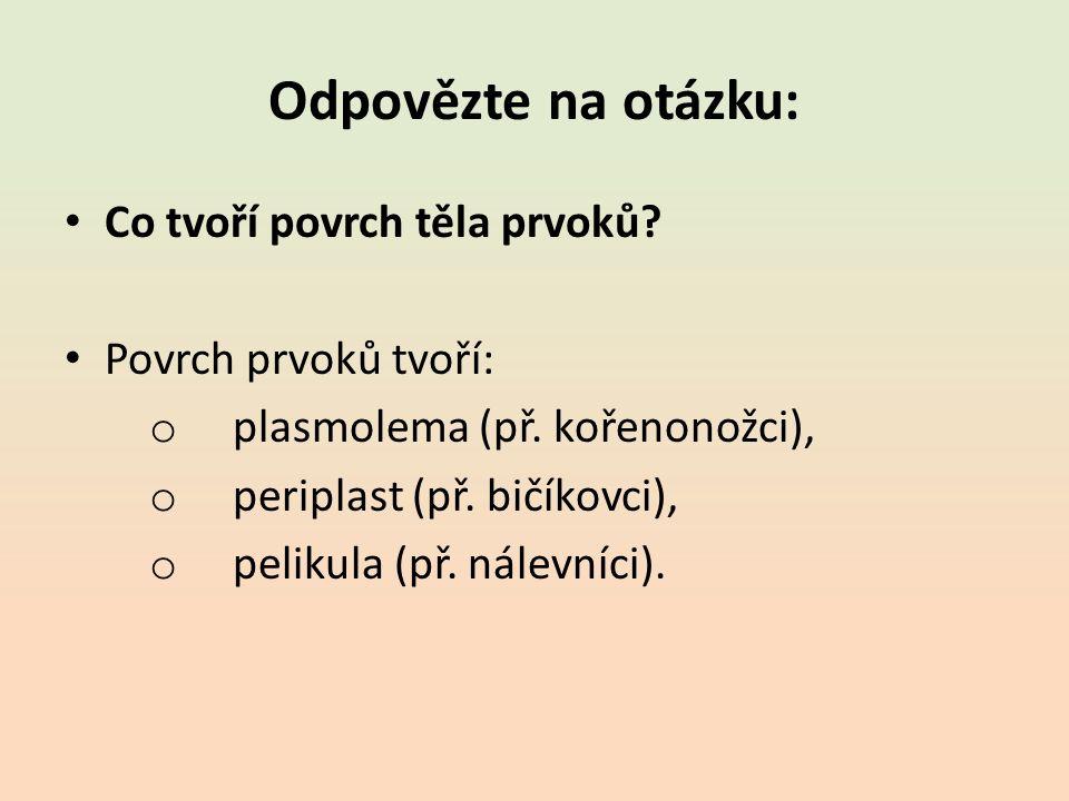 Odpovězte na otázku: Co tvoří povrch těla prvoků. Povrch prvoků tvoří: o plasmolema (př.