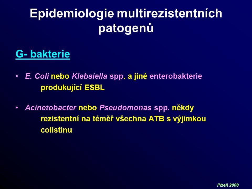 Plzeň 2008 Epidemiologie multirezistentních patogenů G- bakterie E.