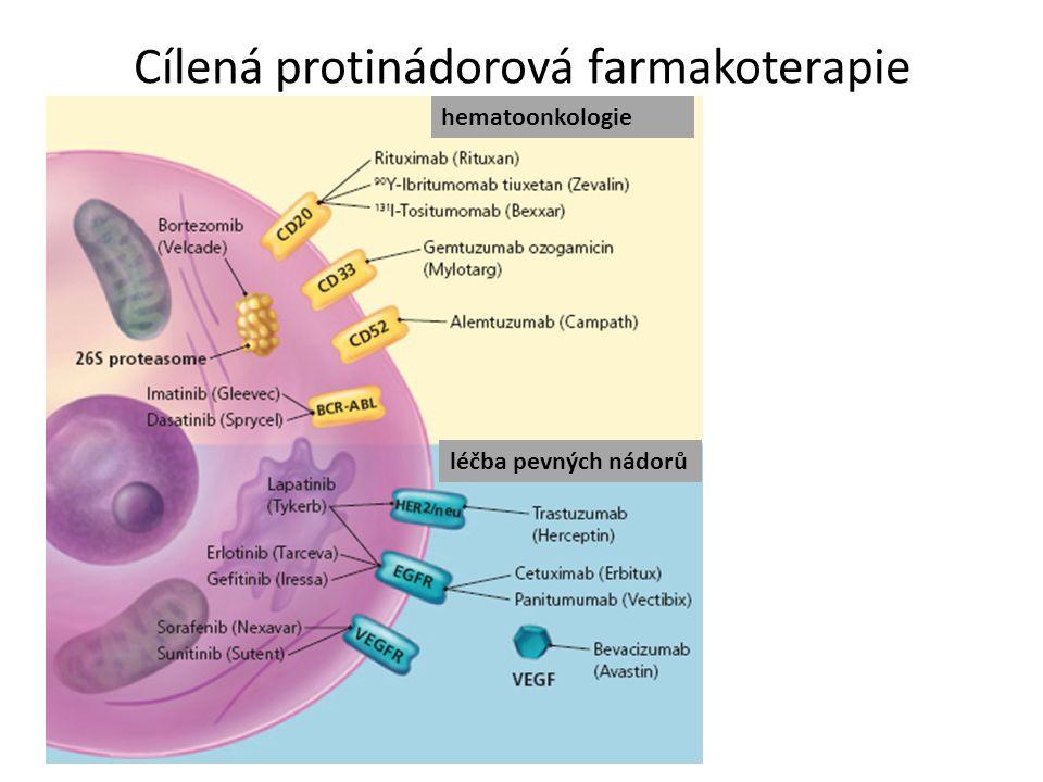 Cílená protinádorová farmakoterapie hematoonkologie léčba pevných nádorů