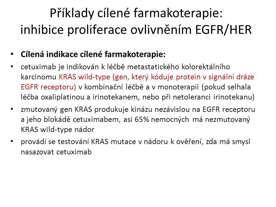 Příklady cílené farmakoterapie: inhibice proliferace ovlivněním EGFR/HER Cílená indikace cílené farmakoterapie: cetuximab je indikován k léčbě metastatického kolorektálního karcinomu KRAS wild-type (gen, který kóduje protein v signální dráze EGFR receptoru) v kombinační léčbě a v monoterapii (pokud selhala léčba oxaliplatinou a irinotekanem, nebo při netoleranci irinotekanu) zmutovaný gen KRAS produkuje kinázu nezávislou na EGFR receptoru a jeho blokádě cetuximabem, asi 65% nemocných má nezmutovaný KRAS wild-type nádor provádí se testování KRAS mutace v nádoru k ověření, zda má smysl nasazovat cetuximab