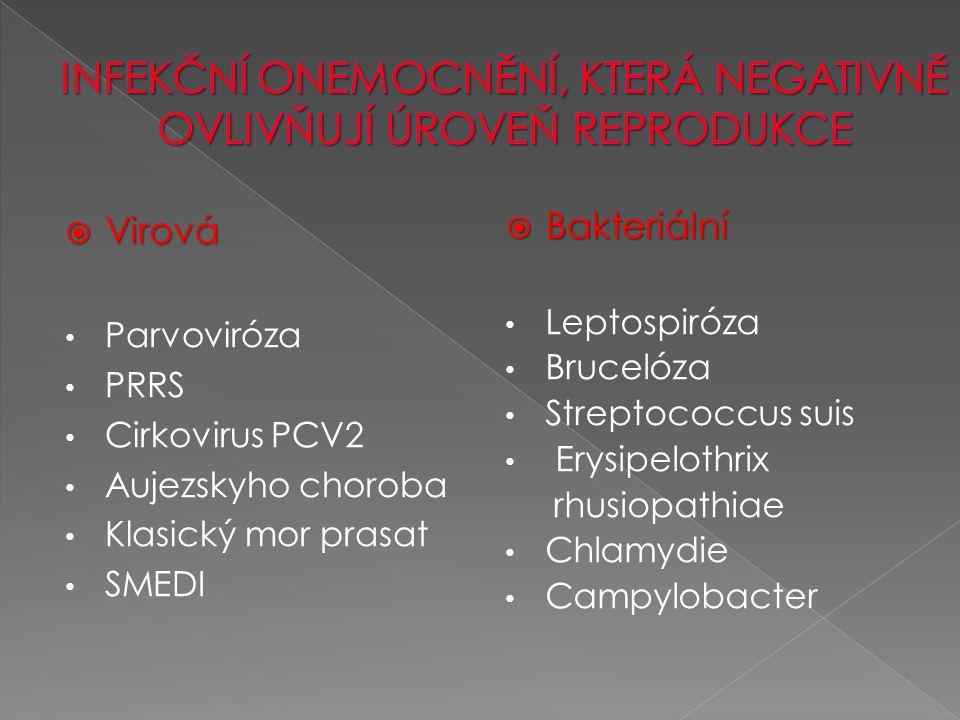  Virová Parvoviróza PRRS Cirkovirus PCV2 Aujezskyho choroba Klasický mor prasat SMEDI  Bakteriální Leptospiróza Brucelóza Streptococcus suis Erysipelothrix rhusiopathiae Chlamydie Campylobacter
