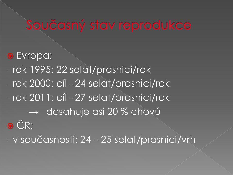  Evropa: - rok 1995: 22 selat/prasnici/rok - rok 2000: cíl - 24 selat/prasnici/rok - rok 2011: cíl - 27 selat/prasnici/rok → dosahuje asi 20 % chovů  ČR: - v současnosti: 24 – 25 selat/prasnici/vrh