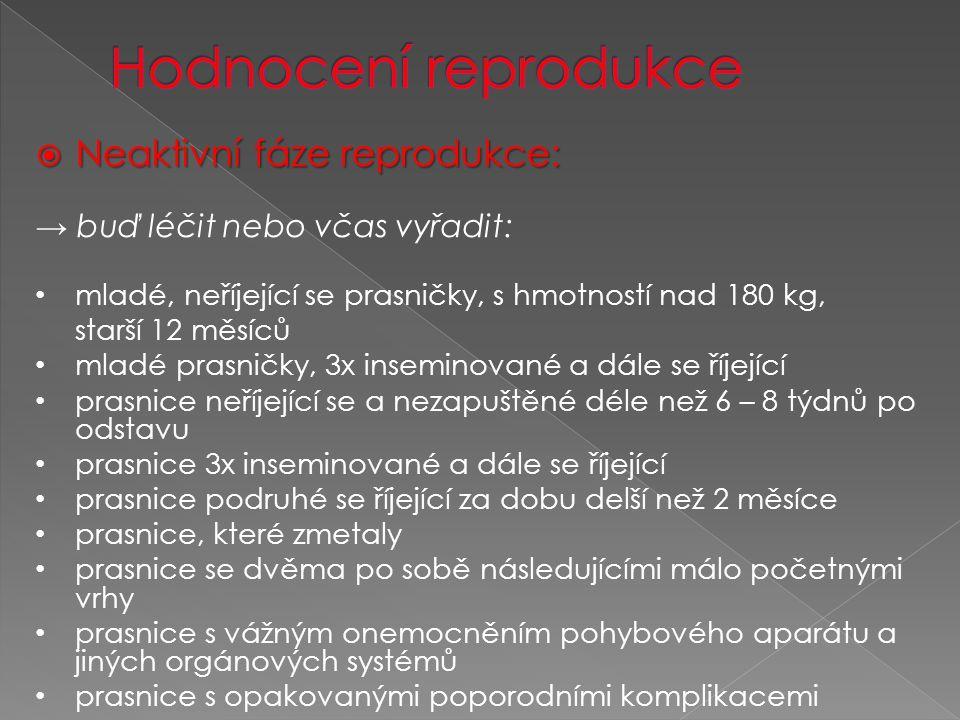  Neaktivní fáze reprodukce: → buď léčit nebo včas vyřadit: mladé, neříjející se prasničky, s hmotností nad 180 kg, starší 12 měsíců mladé prasničky, 3x inseminované a dále se říjející prasnice neříjející se a nezapuštěné déle než 6 – 8 týdnů po odstavu prasnice 3x inseminované a dále se říjející prasnice podruhé se říjející za dobu delší než 2 měsíce prasnice, které zmetaly prasnice se dvěma po sobě následujícími málo početnými vrhy prasnice s vážným onemocněním pohybového aparátu a jiných orgánových systémů prasnice s opakovanými poporodními komplikacemi