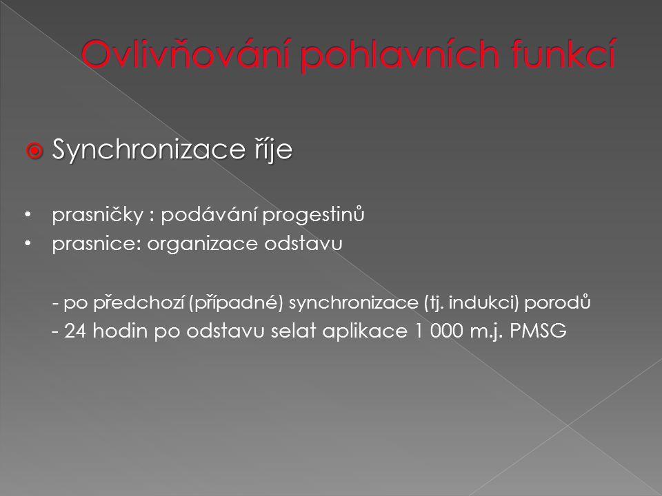  Synchronizace říje prasničky : podávání progestinů prasnice: organizace odstavu - po předchozí (případné) synchronizace (tj.