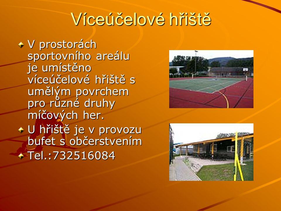 Víceúčelové hřiště V prostorách sportovního areálu je umístěno víceúčelové hřiště s umělým povrchem pro různé druhy míčových her. U hřiště je v provoz