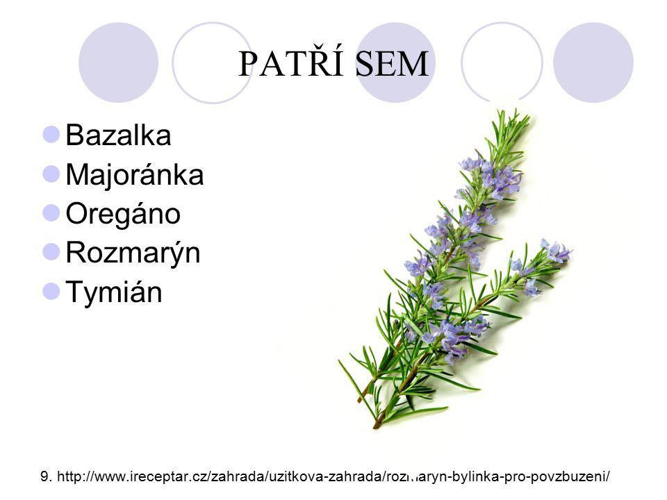 PATŘÍ SEM Bazalka Majoránka Oregáno Rozmarýn Tymián 9. http://www.ireceptar.cz/zahrada/uzitkova-zahrada/rozmaryn-bylinka-pro-povzbuzeni/