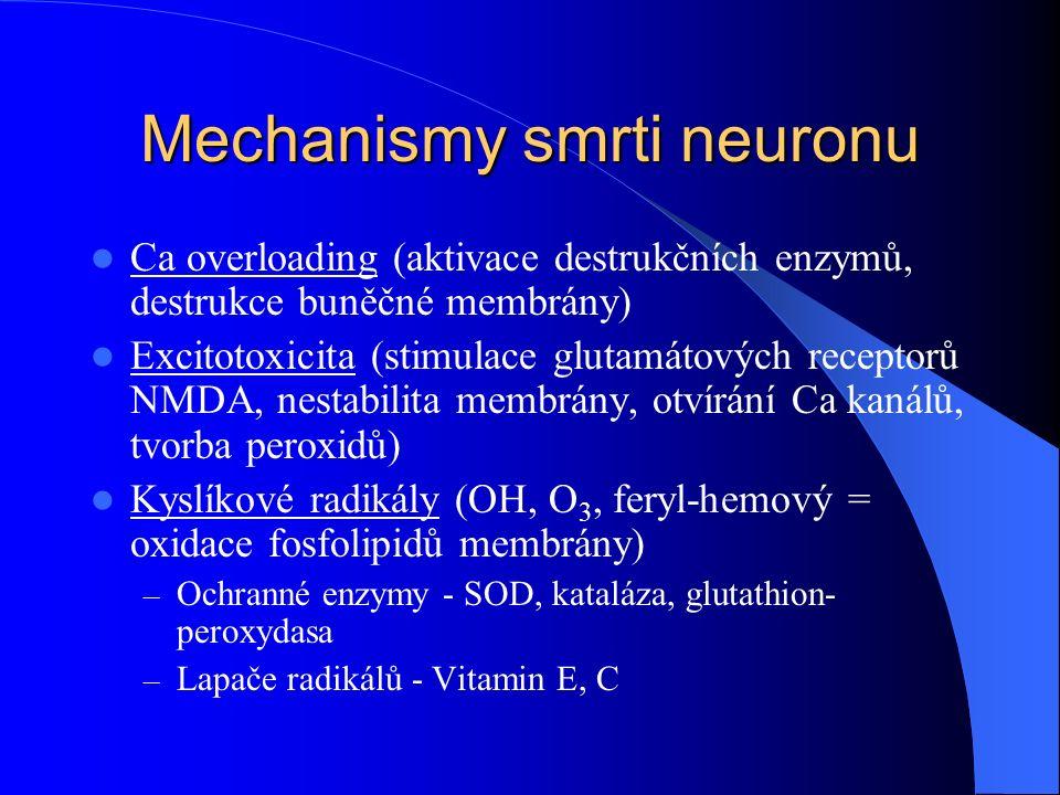 Mechanismy smrti neuronu Ca overloading (aktivace destrukčních enzymů, destrukce buněčné membrány) Excitotoxicita (stimulace glutamátových receptorů N