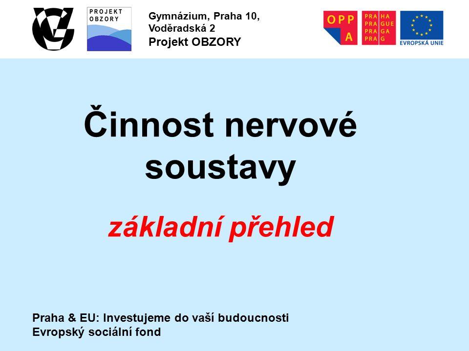 Praha & EU: Investujeme do vaší budoucnosti Evropský sociální fond Gymnázium, Praha 10, Voděradská 2 Projekt OBZORY Činnost nervové soustavy základní přehled