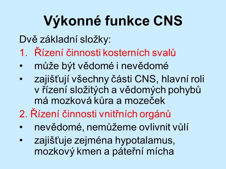 Výkonné funkce CNS Dvě základní složky: 1.Řízení činnosti kosterních svalů může být vědomé i nevědomé zajišťují všechny části CNS, hlavní roli v řízení složitých a vědomých pohybů má mozková kůra a mozeček 2.