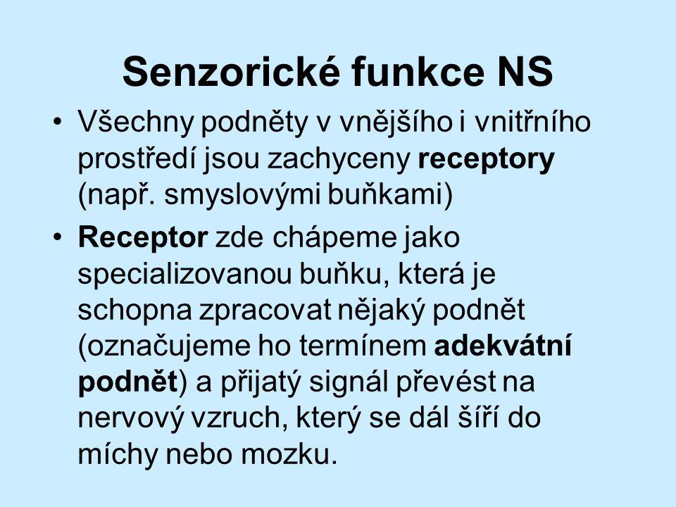 Senzorické funkce NS Všechny podněty v vnějšího i vnitřního prostředí jsou zachyceny receptory (např.
