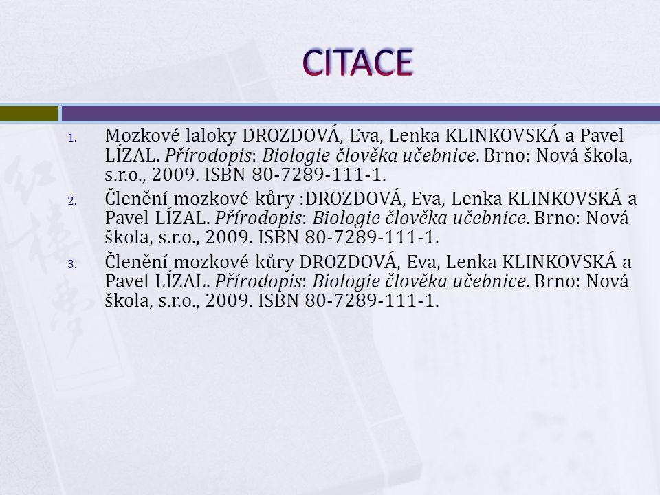 1. Mozkové laloky DROZDOVÁ, Eva, Lenka KLINKOVSKÁ a Pavel LÍZAL.