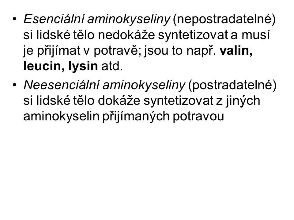 Esenciální aminokyseliny (nepostradatelné) si lidské tělo nedokáže syntetizovat a musí je přijímat v potravě; jsou to např. valin, leucin, lysin atd.