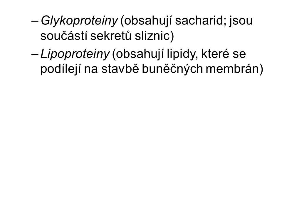 –Glykoproteiny (obsahují sacharid; jsou součástí sekretů sliznic) –Lipoproteiny (obsahují lipidy, které se podílejí na stavbě buněčných membrán)