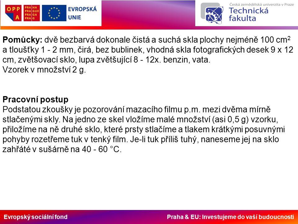 Evropský sociální fond Praha & EU: Investujeme do vaší budoucnosti Pomůcky: dvě bezbarvá dokonale čistá a suchá skla plochy nejméně 100 cm 2 a tloušťk