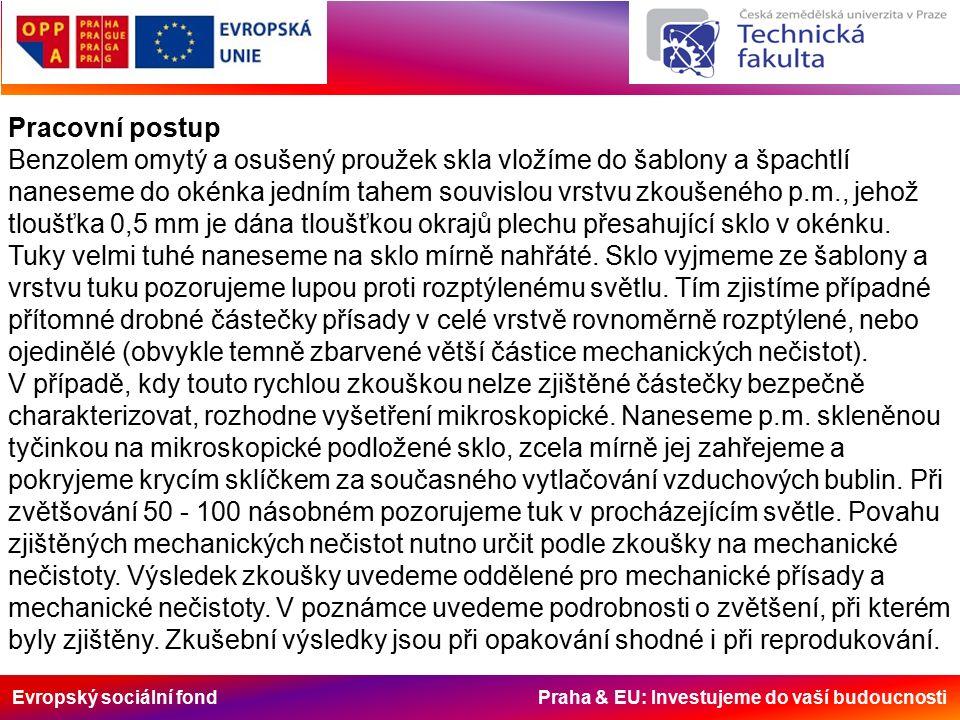 Evropský sociální fond Praha & EU: Investujeme do vaší budoucnosti Pracovní postup Benzolem omytý a osušený proužek skla vložíme do šablony a špachtlí