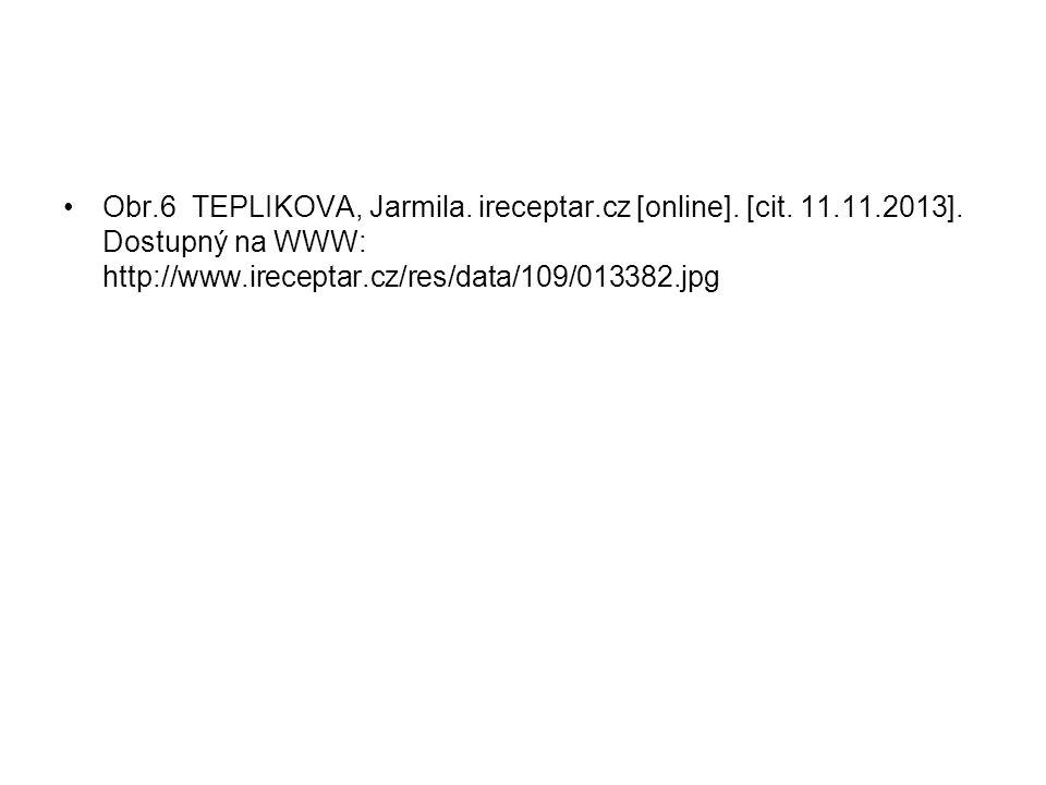 Obr.6 TEPLIKOVA, Jarmila. ireceptar.cz [online]. [cit.