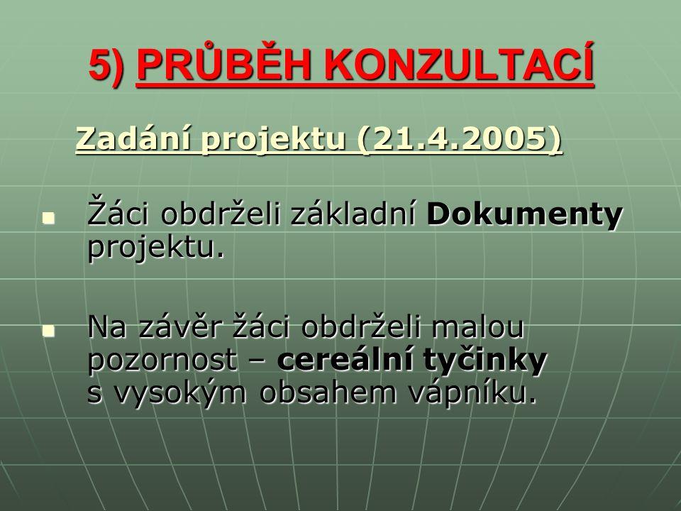 5) PRŮBĚH KONZULTACÍ Zadání projektu (21.4.2005) Žáci obdrželi základní Dokumenty projektu.