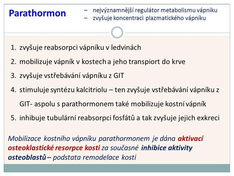 Parathormon 1.zvyšuje reabsorpci vápníku v ledvinách 2.mobilizuje vápník v kostech a jeho transpiort do krve 3.zvyšuje vstřebávání vápníku z GIT 4.stimuluje syntézu kalcitriolu – ten zvyšuje vstřebávání vápníku z GIT- aspolu s parathormonem také mobilizuje kostní vápník 5.inhibuje tubulární reabsorpci fosfátů a tak zvyšuje jejich exkreci Mobilizace kostního vápníku parathormonem je dána aktivací osteoklastické resorpce kosti za současné inhibice aktivity osteoblastů – podstata remodelace kosti –nejvýznamnější regulátor metabolismu vápníku –zvyšuje koncentraci plazmatického vápníku