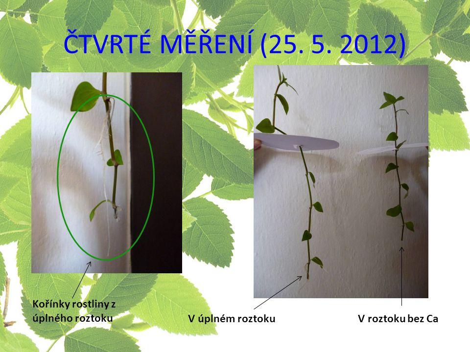 V úplném roztokuV roztoku bez Ca Kořínky rostliny z úplného roztoku
