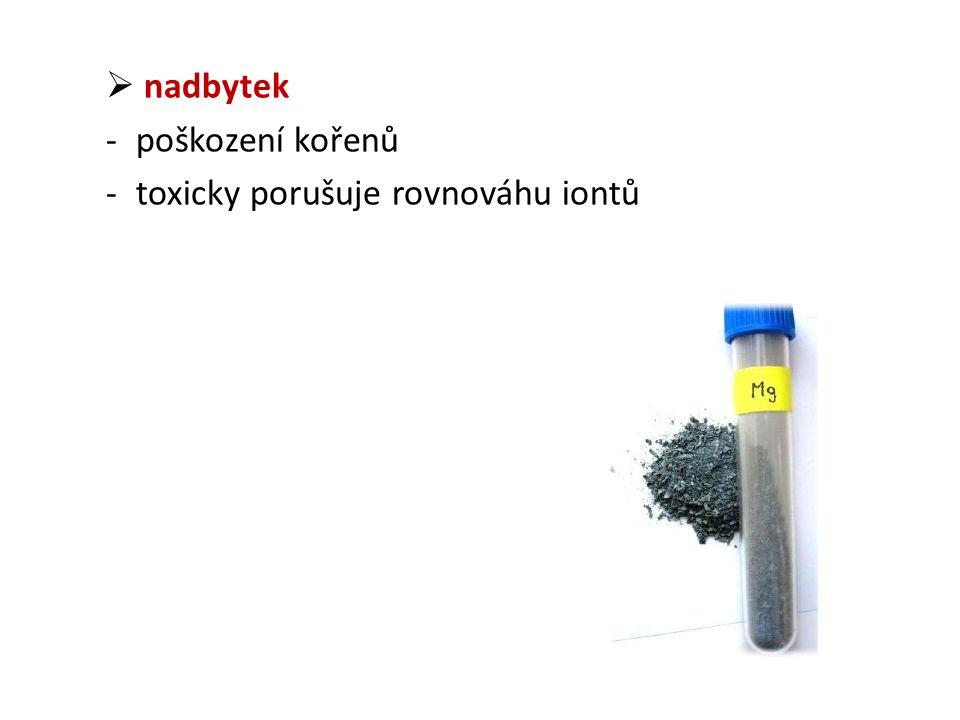  nadbytek -poškození kořenů -toxicky porušuje rovnováhu iontů