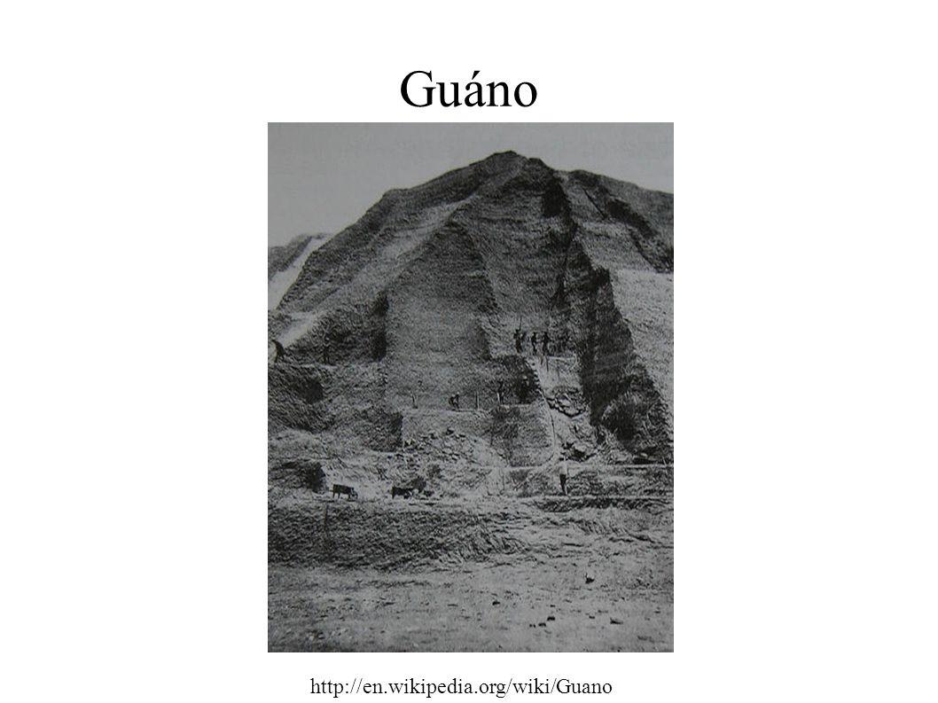 Guáno http://en.wikipedia.org/wiki/Guano