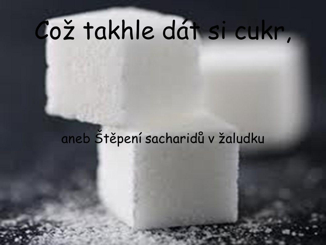 Což takhle dát si cukr, aneb Štěpení sacharidů v žaludku