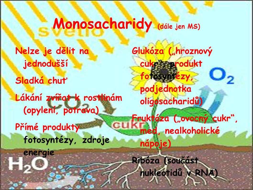 """Monosacharidy (dále jen MS)  Nelze je dělit na jednodušší Sladká chuť Lákání zvířat k rostlinám (opylení, potrava)  Přímé produkty fotosyntézy, zdroje energie Glukóza (""""hroznový cukr , produkt fotosyntézy, podjednotka oligosacharidů)  Fruktóza (""""ovocný cukr , med, nealkoholické nápoje)  Ribóza (součást nukleotidů v RNA) """
