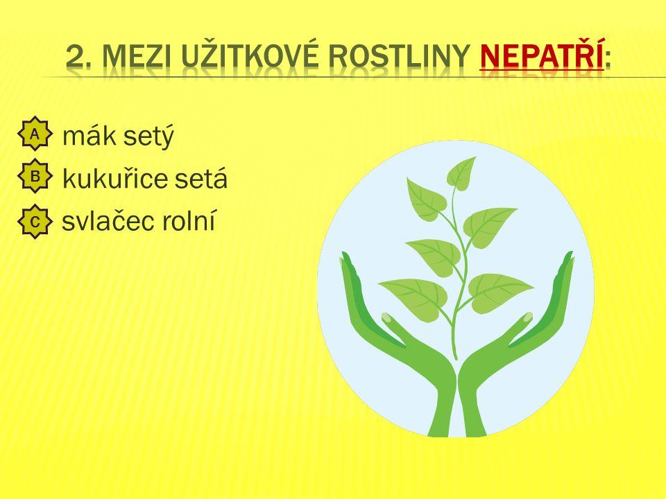 výhradně masitou potravou výhradně rostlinnou potravou rostlinnou a masitou potravou A B C