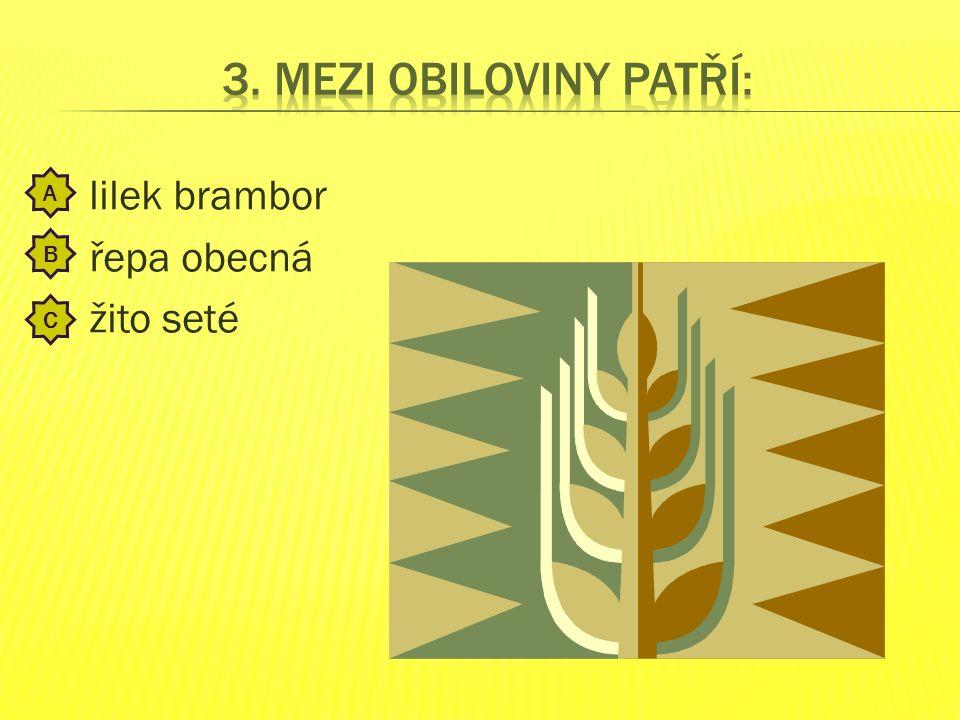 mák setý kukuřice setá svlačec rolní A B C