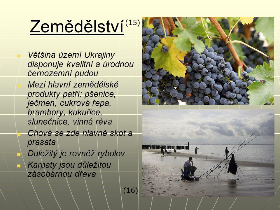 Zemědělství Většina území Ukrajiny disponuje kvalitní a úrodnou černozemní půdou Mezi hlavní zemědělské produkty patří: pšenice, ječmen, cukrová řepa, brambory, kukuřice, slunečnice, vinná réva Chová se zde hlavně skot a prasata Důležitý je rovněž rybolov Karpaty jsou důležitou zásobárnou dřeva (15) (16)