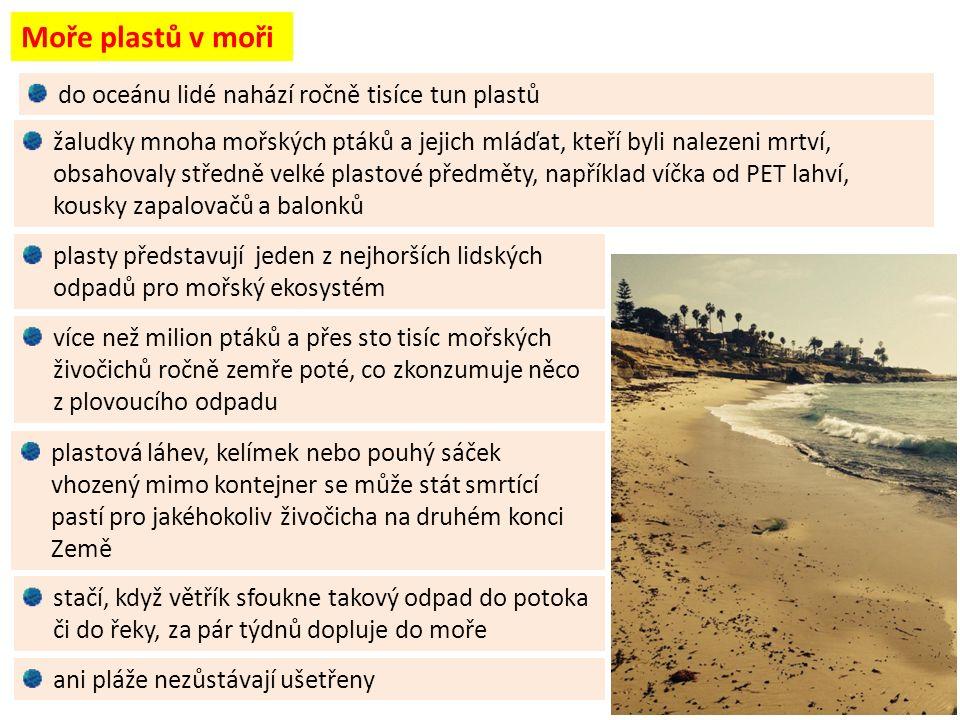 Moře plastů v moři stačí, když větřík sfoukne takový odpad do potoka či do řeky, za pár týdnů dopluje do moře ani pláže nezůstávají ušetřeny plasty představují jeden z nejhorších lidských odpadů pro mořský ekosystém žaludky mnoha mořských ptáků a jejich mláďat, kteří byli nalezeni mrtví, obsahovaly středně velké plastové předměty, například víčka od PET lahví, kousky zapalovačů a balonků více než milion ptáků a přes sto tisíc mořských živočichů ročně zemře poté, co zkonzumuje něco z plovoucího odpadu plastová láhev, kelímek nebo pouhý sáček vhozený mimo kontejner se může stát smrtící pastí pro jakéhokoliv živočicha na druhém konci Země do oceánu lidé nahází ročně tisíce tun plastů
