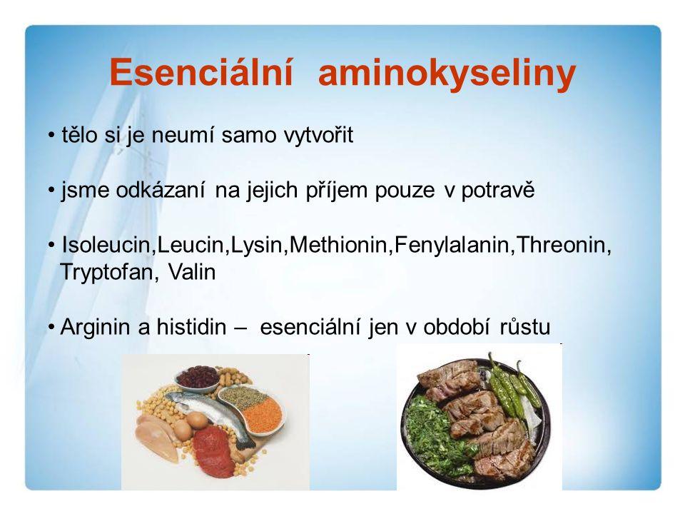 Esenciální aminokyseliny tělo si je neumí samo vytvořit jsme odkázaní na jejich příjem pouze v potravě Isoleucin,Leucin,Lysin,Methionin,Fenylalanin,Threonin, Tryptofan, Valin Arginin a histidin – esenciální jen v období růstu